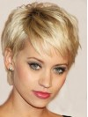 Popular Short Straight Remy Human Hair Wig amaa1710001