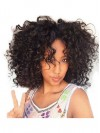 Curly Indian Remy Human Hair Front Lace Wigs For African American amab034