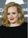 Adele Shoulder Length Water Wave Lace Front Synthetic Wigs amae247